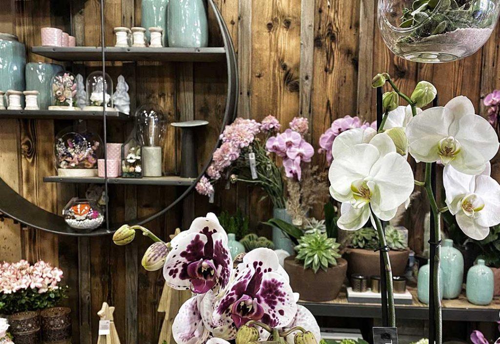 Fleuriste Chamonix