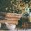 3 méthodes pour accompagner sa santé naturellement à Chamonix